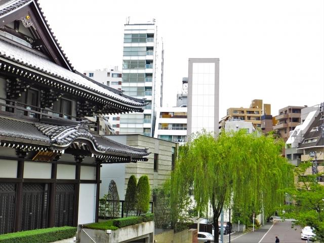 善福寺の杖イチョウ|都内のイチョウで最大かつ最高齢だ!